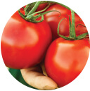 Tomatoes seeds - F-1 2550