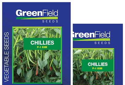 Chilles Seeds